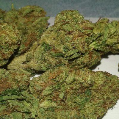 Buy Skywalker weed Strain UK