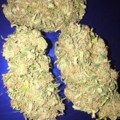 Buy Chocolate Chunk Cannabis Strain UK