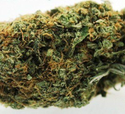 Pink Death Star Marijuana Strain UK