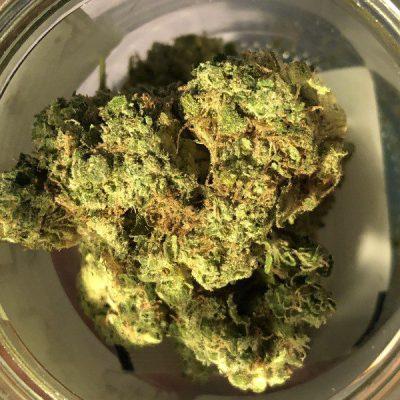 Buy Alien cookie weed strain uk