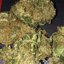 Buy Apple Jack Weed Strain UK