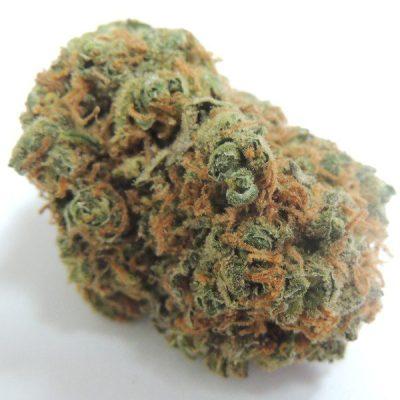 Buy Bob Marley Weed Strain UK