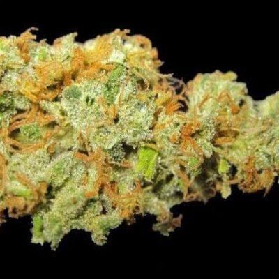 Buy Hawaiian Weed Strain UK