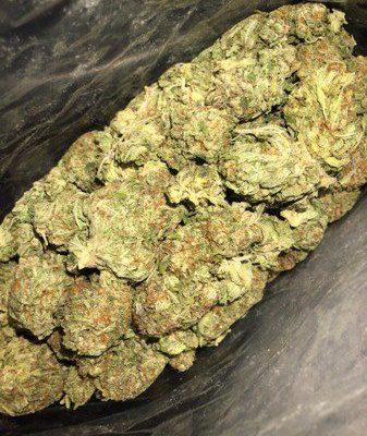 Buy Pine OG Weed Strain UK