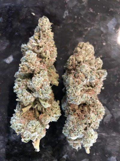 Buy Ghost Breath Marijuana Strain UK