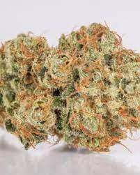 Buy 7-Way Medical Weed Strain UK