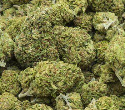 Buy weed strains