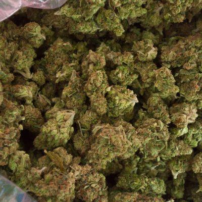 Sour Diesel Weed Strain UK