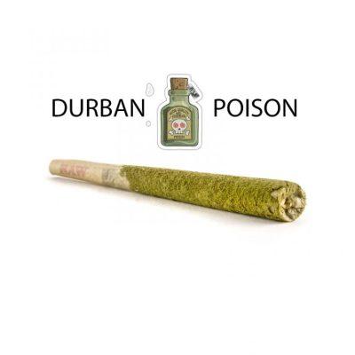 Caviar Joints UK Durban Poison – Sativa